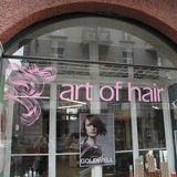 Art of hair Luzern